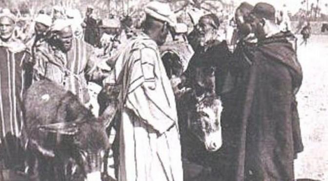 Histoire : Un universitaire israélien révèle le sale jeu du Mossad dans le grand départ des juifs du Maroc