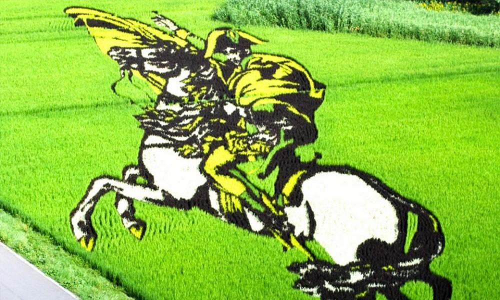 des-dizaines-de-champs-de-riz-transformes-en-superbes-oeuvres-dart-au-japon