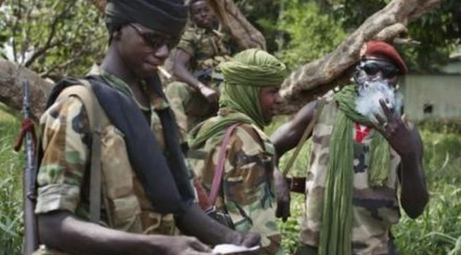 République centrafricaine : Les raisons cachées de l'intervention française