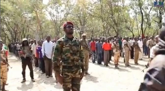 Naissance d'un nouveau mouvement rebelle en Centrafrique