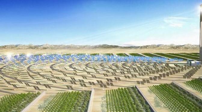 Le Qatar n'aura bientôt plus besoin d'importer le moindre légume!