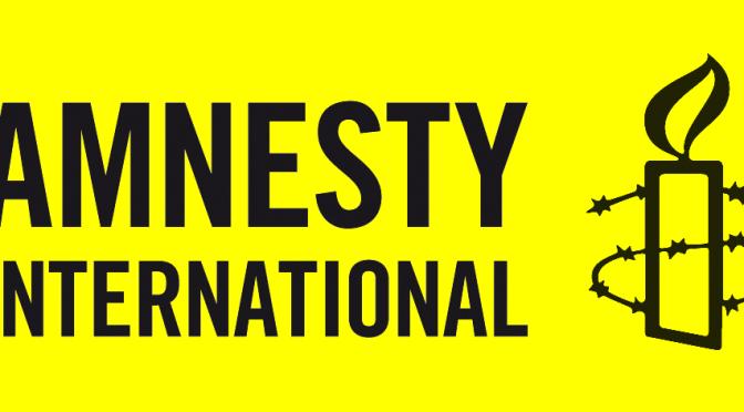 Le dessous des ONG, une vérité cachée : Amnesty International