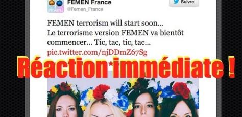 Tweet-Femen-Terrorisme1-620x300